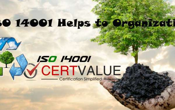 Importance and Benefits of ISO 14001 for the Organization in Hyderabad